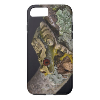 African Red Eye Treefrog, Leptopelis iPhone 7 Case