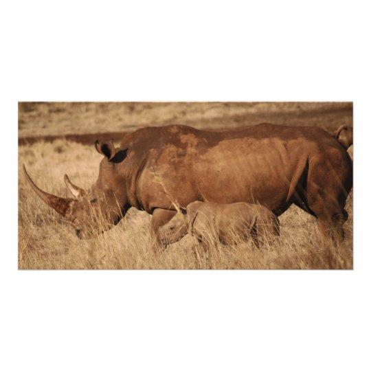 African Rhino mom and baby Card
