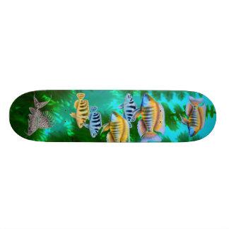African Rift Lake Cichlids Skateboard