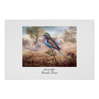 African Roller Poster