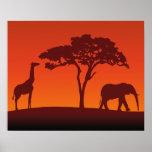 African Safari Silhouette - Poster Print