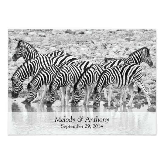 African Safari Zebra Wedding Invitation