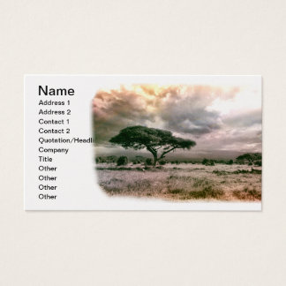 African Sahara Serengeti Savannah National Park Business Card