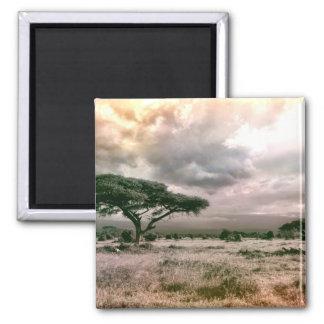 African Sahara Serengeti Savannah National Park Magnet