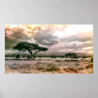 African Sahara Serengeti Savannah National Park Poster