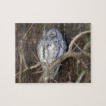 African Scops-Owl, Kruger National Park, South Jigsaw Puzzle