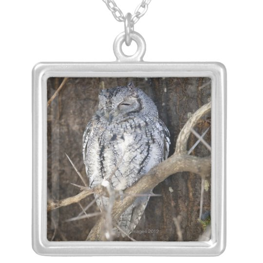 African Scops-Owl, Kruger National Park, South Silver Plated Necklace