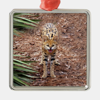 African Serval Christmas Ornament