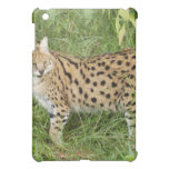 African Serval  Cover For The iPad Mini