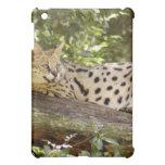 African Serval  iPad Mini Case