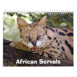 African Servals Calendar, African Servals Calendar