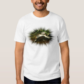 African Side Necked Turtle in a burst frame Shirts