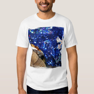 African Sideneck Turtle and Blue tinsel with star Tees