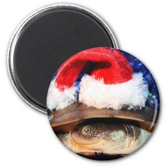 African sideneck turtle wearing santa hat magnet