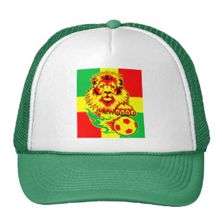 African Soccer Lion Mesh Hats