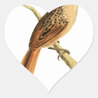 African Soft-tail Heart Sticker