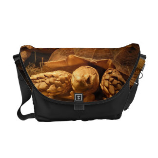 African Spurred Tortoise Courier Bag