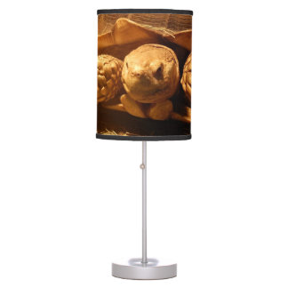 African Spurred Tortoise Desk Lamp