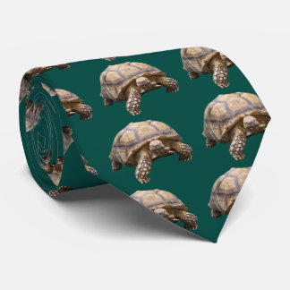 African spurred tortoise neck tie