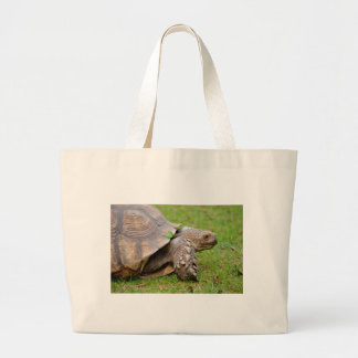 African spurred tortoise on grass large tote bag