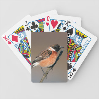 African Stonechat (Saxicola Torquata) On Twig Bicycle Playing Cards