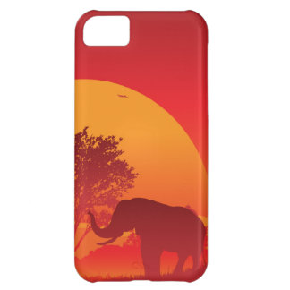 African Sunset iPhone 5C Cover