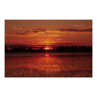 African sunset posters, prints, pictures & images poster