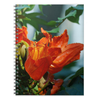 African Tulip Tree Spiral Notebooks
