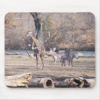 African Velt Mouse Pad