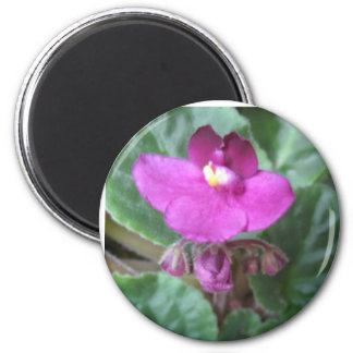 African Violet 2 Inch Round Magnet