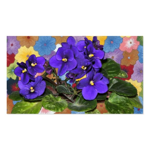 African violet business card template
