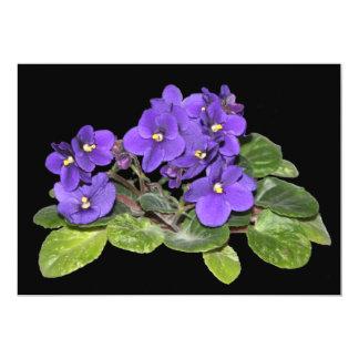 African violet card