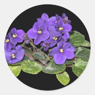 African violet classic round sticker
