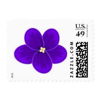 African Violet Postage Stamp