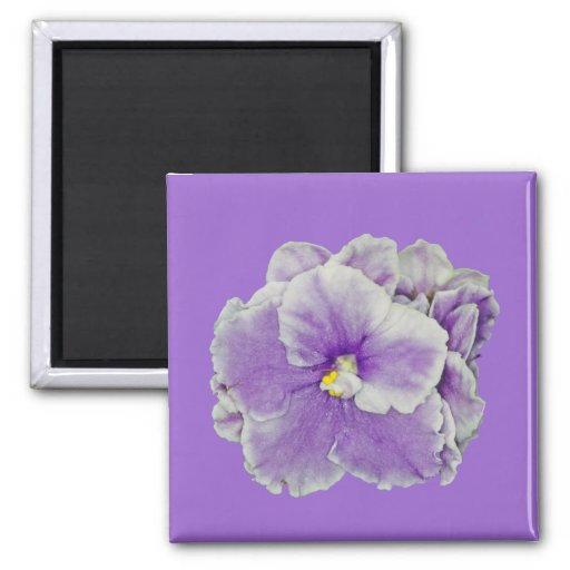 African Violet Purple 2 Inch Square Magnet