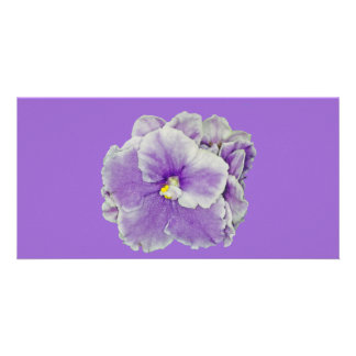 African Violet Purple Card