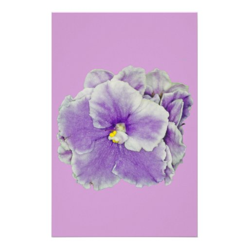 African Violet Purple Customized Stationery