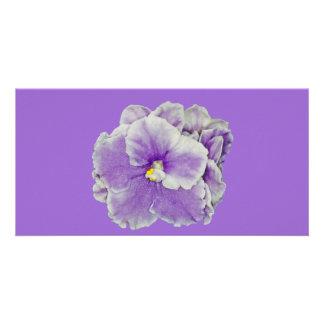 African Violet Purple Custom Photo Card
