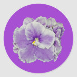 African Violet Purple Stickers