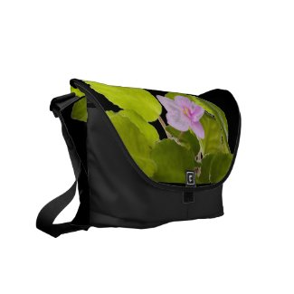 african violet - saintpaulia ionantha courier bags