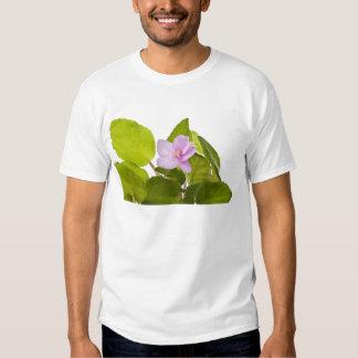 african violet - saintpaulia ionantha t shirt