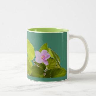 african violet - saintpaulia ionantha Two-Tone coffee mug