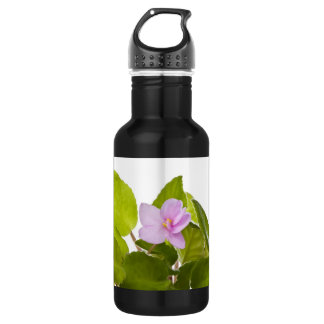 african violet - saintpaulia ionantha water bottle