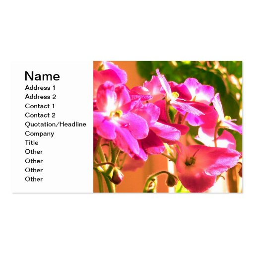 African violets business cards