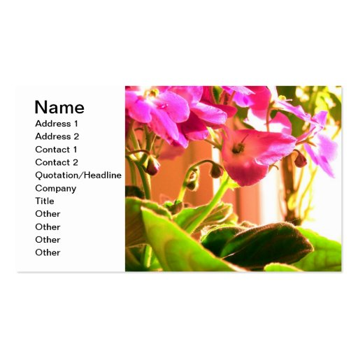African Violets Business Card Template