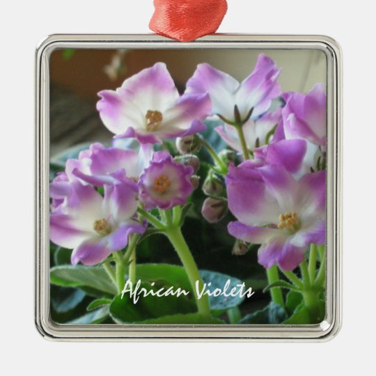 African Violets Flowers Ornament