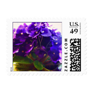 African Violets Flowers Postage