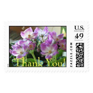 African Violets Thank You Stamp