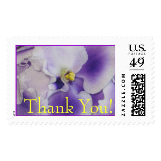 African VioletsThank You Stamp