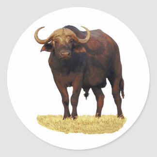 African Water Buffalo Classic Round Sticker